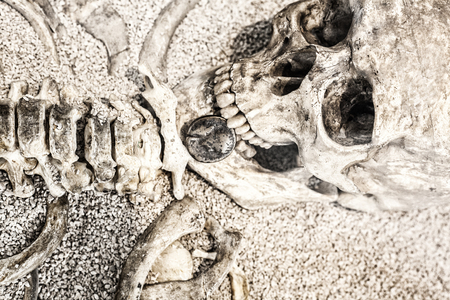 conveyed: Human skeleton with coin in the mouth. Replica Stock Photo