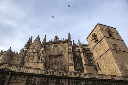Lateral facade of Catedral de Santa Maria of Plasencia, Caceres, Spain Reklamní fotografie