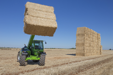 Telescopic handler gathering and stacking bales. Telescopic machinery for agricultural sector Stock Photo