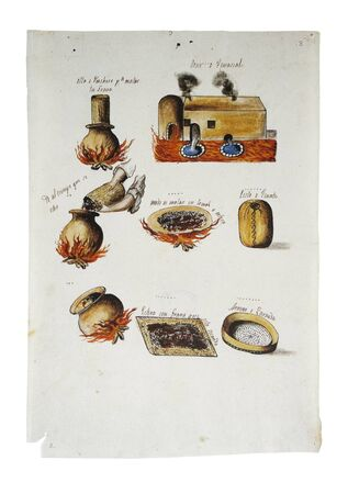 Cochineal production in Mexico, 1821. Process illustration. General Archive of the Indies, Seville, Spain