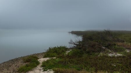 Misty landscape on ocean bay in the morning