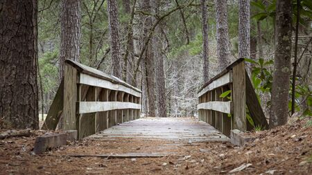 Close up of a wooden bridge along the trail in a forest