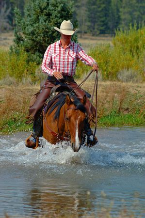 montana: Bay Horse With Rider, Traveling Through Water Stock Photo