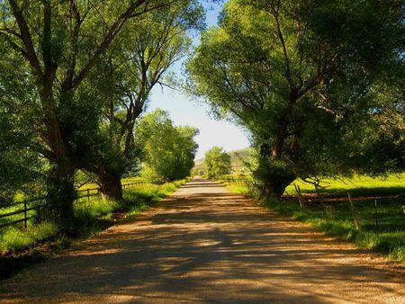 ユタ州の田舎道