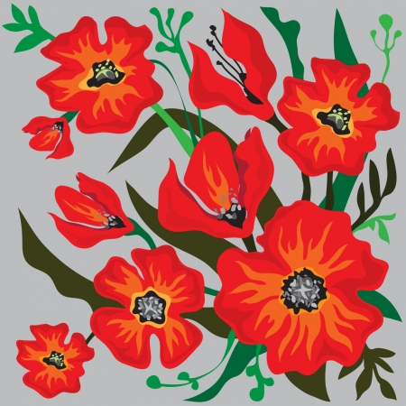 greenfield: Red Poppy Flowers Illustration