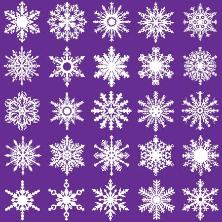 Snow Flakes Vector