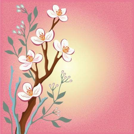 Blossom cherry branches and the willow tree on pink background