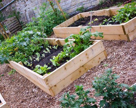 Rustic Country Vegetable  Flower Garden with Raised Beds