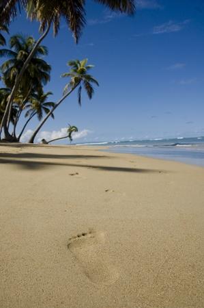 ferien: footprints