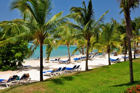 Beautiful caribbean beach with sun beds