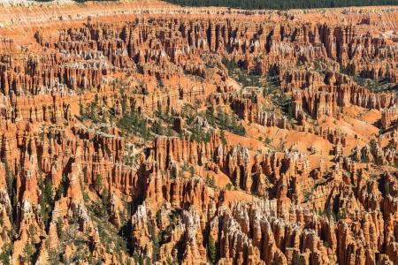 hoodoos: hoodoos in Bryce Amphitheater, Bryce Canyon National Park, Utah Stock Photo