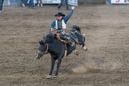 CODY, WYOMING - JUNE 29, 2018: Cody Stampede Park arena. Cody is the Rodeo Capitol of the World. 2018 marks 80th anniversary of nightly performances. Zdjęcie Seryjne - 122440656