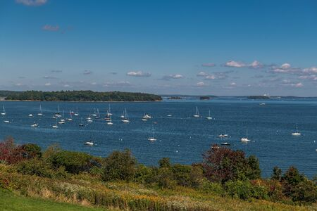 Many luxury sailboats moored in bay of Portland, Maine Stok Fotoğraf