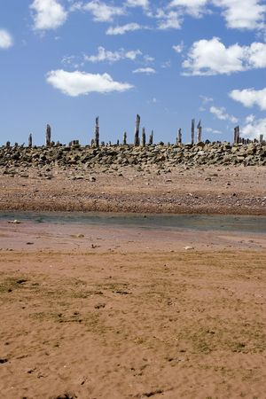 sea floor in the Bay of Fundy at low tide photo