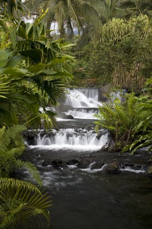 Tabacon Springs in Costa Rica at the base of Arenal Volcano