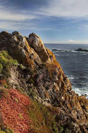 View of colorful flowers and algae on rugged coastline of Point Lobos State Natural Reserve in California Stock Photo
