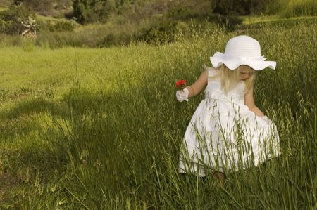 Girl in a white dress holding a flower in a field of grass photo