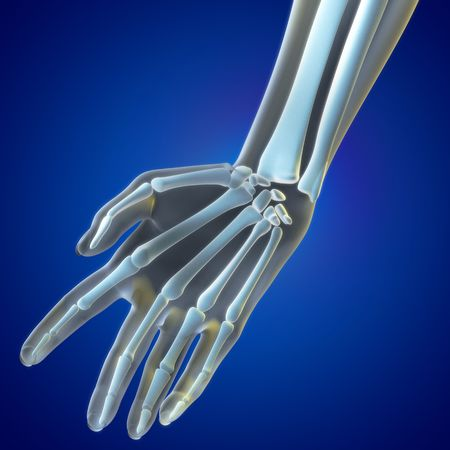 A Medical illustration of the Wrist Region illustration