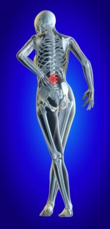 Een 3D-bestand van een lagere terug in pijn weergegeven: skeleton dames geïllustreerd en ontstoken gebied Stockfoto - 7038261