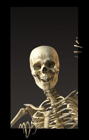 halloween skeleton: A skeleton standing casually and holding a sign on a white background