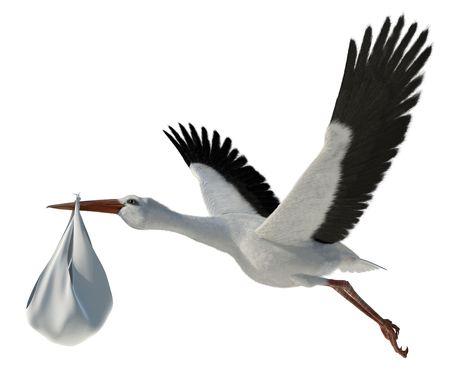 cigue�a: Representaci�n cl�sica de una cig�e�a en vuelo entregar a un beb� reci�n nacido  Foto de archivo