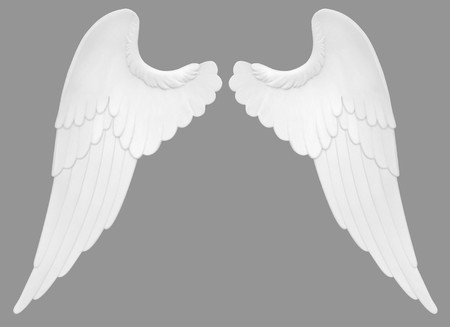 virtue: Angel wings isolated on a white background