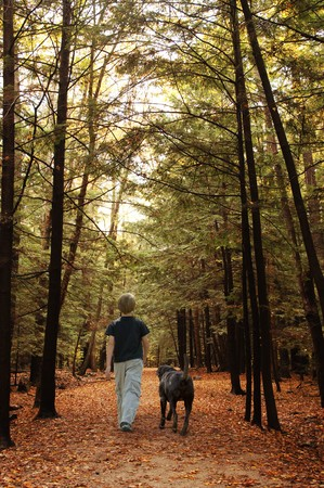 Herbst Wald mit ein Junge und sein Hund Standard-Bild - 7049812