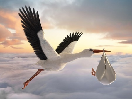 delivering: Classic depiction of a stork in flight delivering a newborn baby Stock Photo