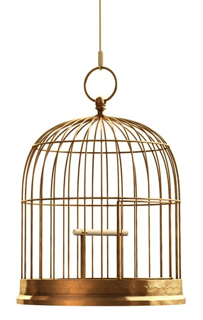 confined: A brass birdcage hanging on a string over white