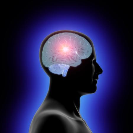 cognicion: Perfil de la cabeza de un hombre y un cerebro transl�cido con un resplandor interior  Foto de archivo