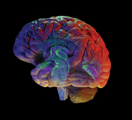 cognition: human brain on black background Stock Photo