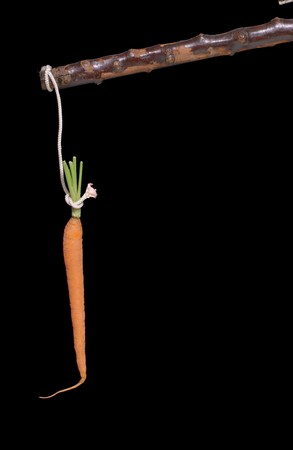 carrot and stick on black                                photo
