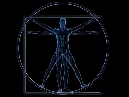 vitruvian man: Hombre de Vitruvio de Xray aislado en blanco