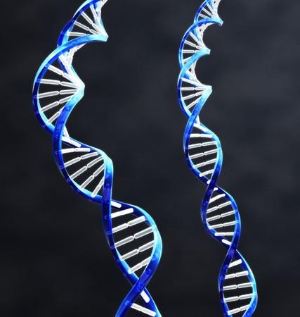 2 二重らせん DNA 鎖暗い背景を持つ。 写真素材
