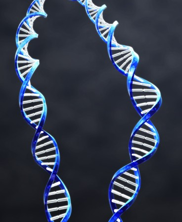 2 double helix strands of DNA with Dark background. photo