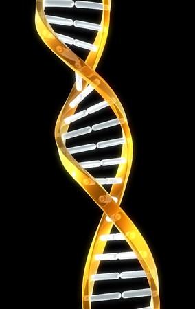 Een dubbele helix onderdeel van dna met zwarte achtergrond voor copyspace. Stockfoto