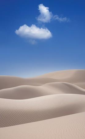 사막의 모래 언덕 스톡 콘텐츠 - 9524878