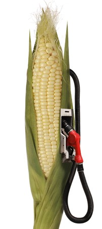 corn stalk: corn stalk ethanol gas pump Stock Photo