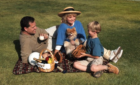 A family picnic on a beautiful day Stock Photo - 9539225