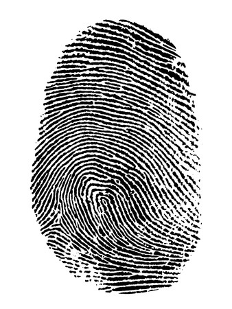 evidence: thumb print on white background Stock Photo