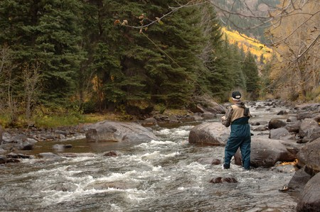 Trout Fishing Vertical Stock Photo - 9524986