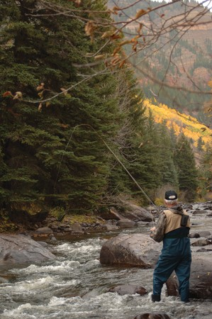 Fly Fisherman in a mountain stream with a fly rod photo