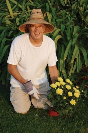 Male senior citizen planting flowers in his garden Stock Photo - 9539258