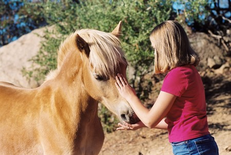 Young girl petting horse while feeding it a treat photo