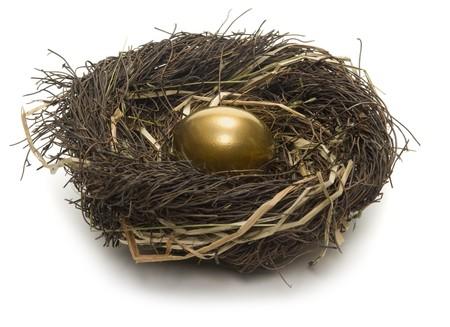 Golden egg inside a nest on white background Stock fotó