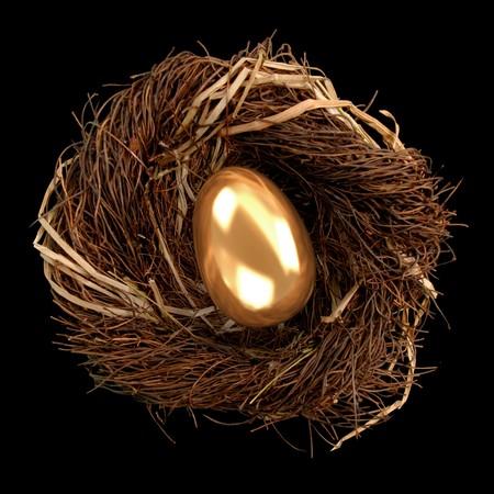 Golden egg inside a nest on black background