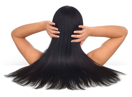 woman back of head: Woman with long black hair on a white background