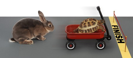 turtle winning the race against a rabbit in a red wagon Stock Photo