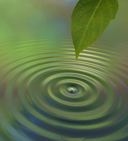drop water: A water drop from a leaf causing a ripple on the surface reflecting a green jungle atmosphere Stock Photo