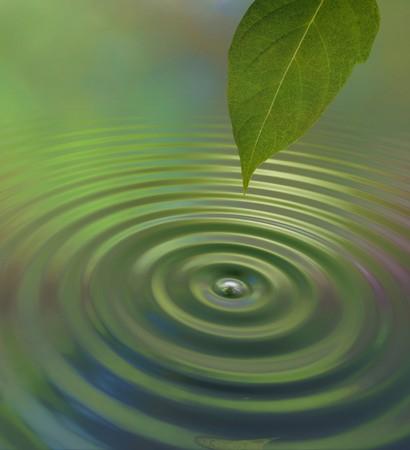 Una goccia d'acqua da una foglia provoca un'increspatura sulla superficie che riflette un'atmosfera di giungla verde Archivio Fotografico - 7059385